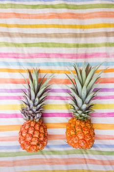 Pineapple Series-1-8