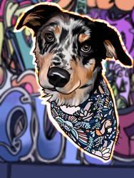 Graffiti pup
