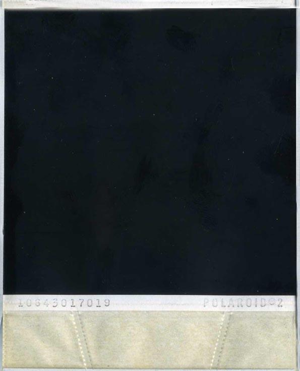 Polaroid Back 2 by elliotbuttons