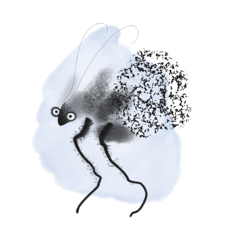 corvusfrugilegus's Profile Picture