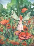 The Poppy Fairie