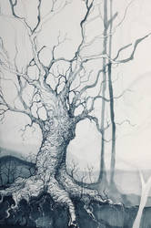 White Wood by Chobek