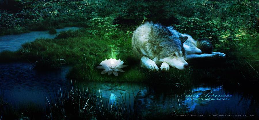 Sad Wolf By Amitielik On Deviantart