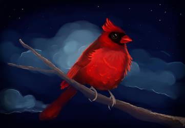 cardinal rouge speedpaint by Amitielik