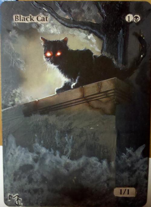 Black Cats Mtg