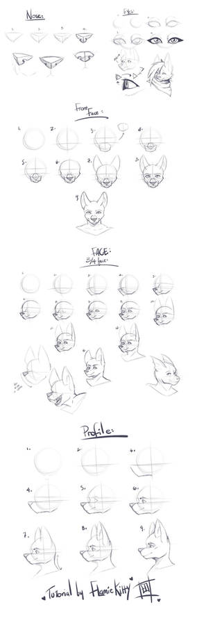 Tutorial- Furry/Anthro heads