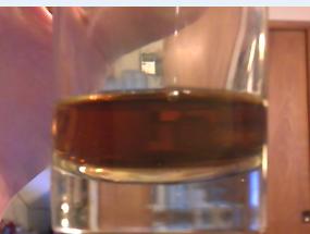 Scotch, Whiskey or tea? by Zugani