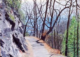 A Mountain Trail by lajeanart