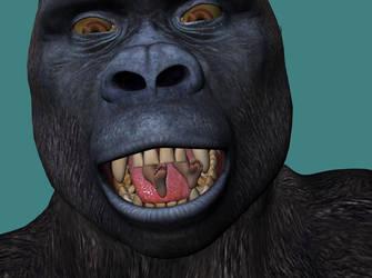 Kong28 by echobabylon
