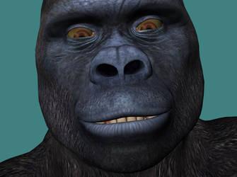 Kong29 by echobabylon