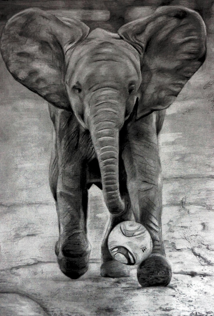 Elephant by Alena-Koshkar