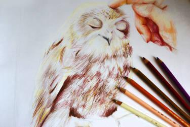 Pat me by Alena-Koshkar