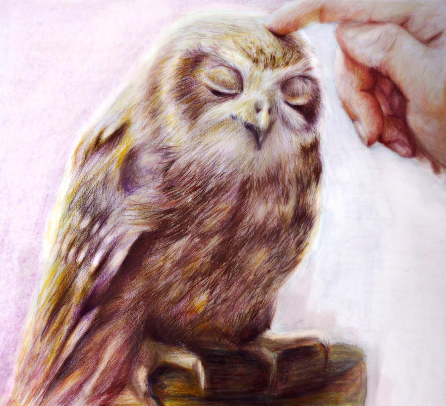 Pat me 2 by Alena-Koshkar