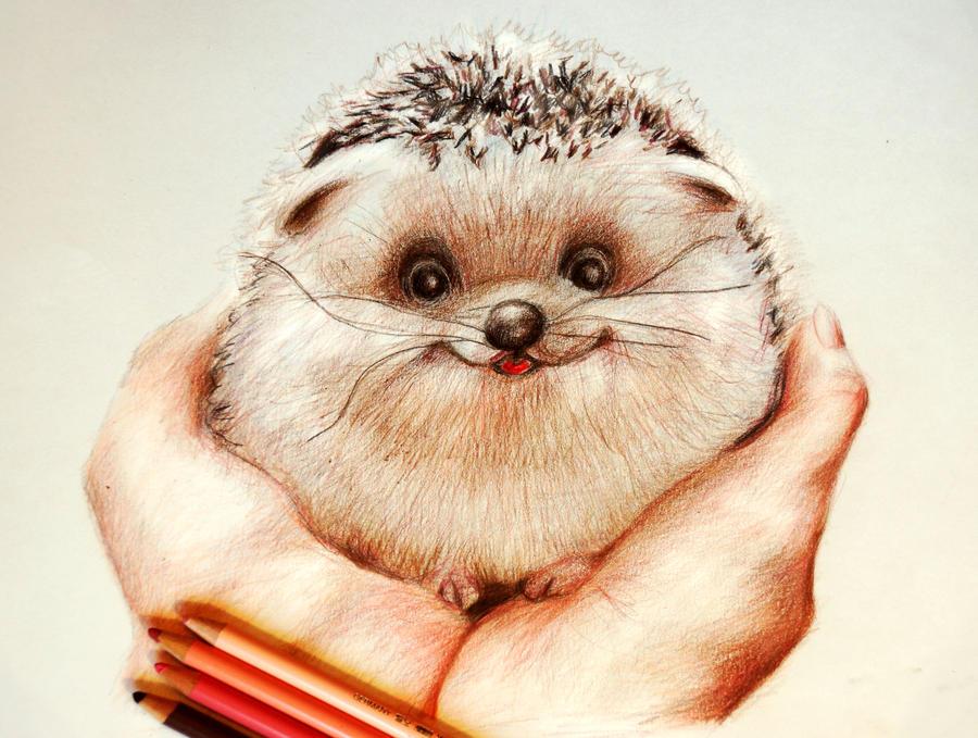 Pat me-sketch by Alena-Koshkar