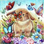 Little bunny by Alena-Koshkar