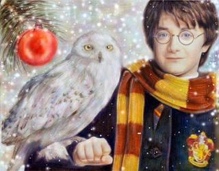 Harry Potter :) by Alena-Koshkar