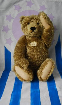 teddy uprising