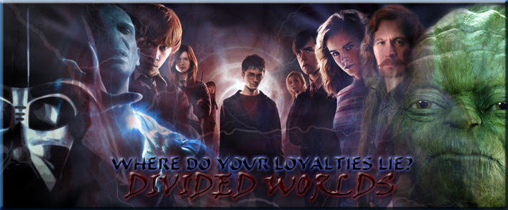 Harry Potter Star Wars Banner by Scrappy14