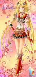 Sailor Moon GSS by Shailo