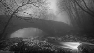 Bridging Emotions