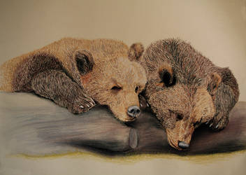 Two Tired Bears by Auwris