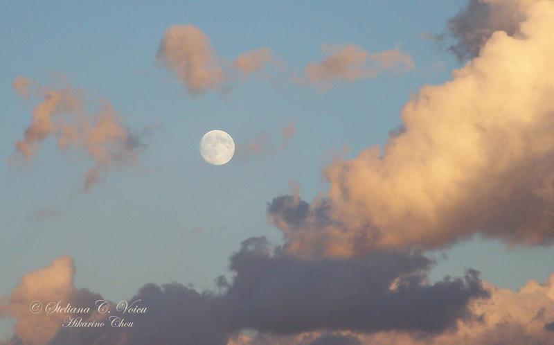 Moonrise 4 by HikarinoChou