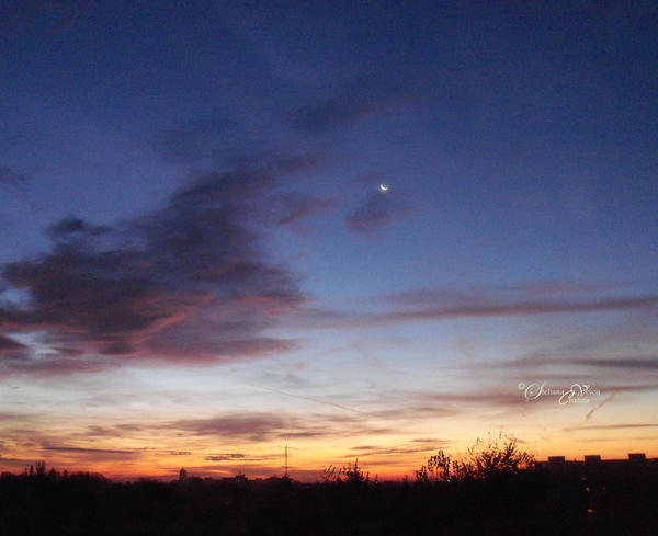Morning Moon by HikarinoChou