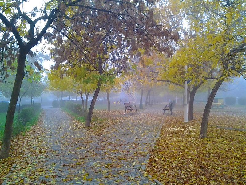 October morning fog by HikarinoChou