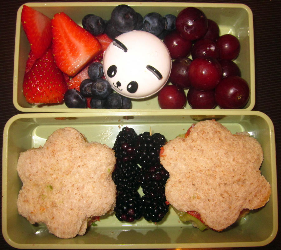 Flower Bento by Thenextera
