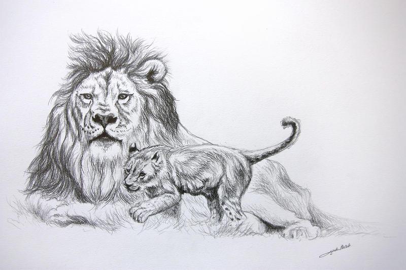 Dessin lion lionceau by jibudp on deviantart - Tete de lion a dessiner ...