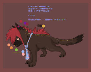 Sasha by orum-the-cat