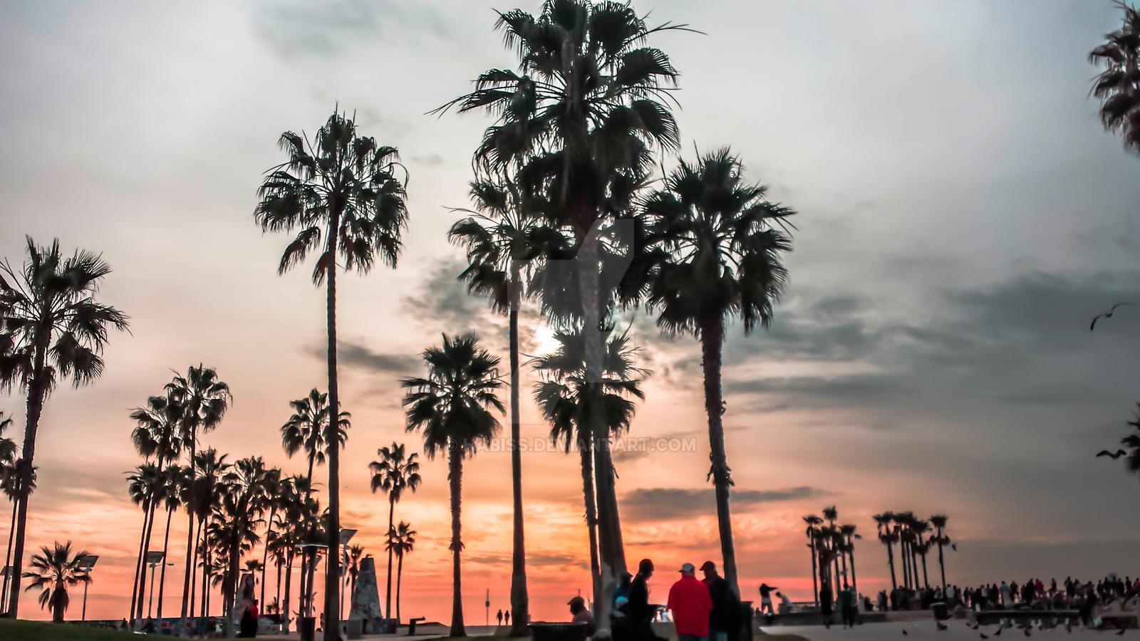 Golden Beach Venice Fl Homes For Sale