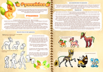 Pyaushies reference sheet - open species