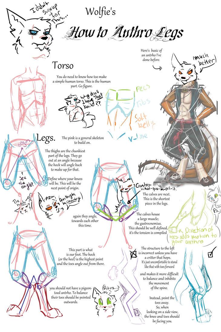 How To Antrho Legs by PoisonDemonSaskia