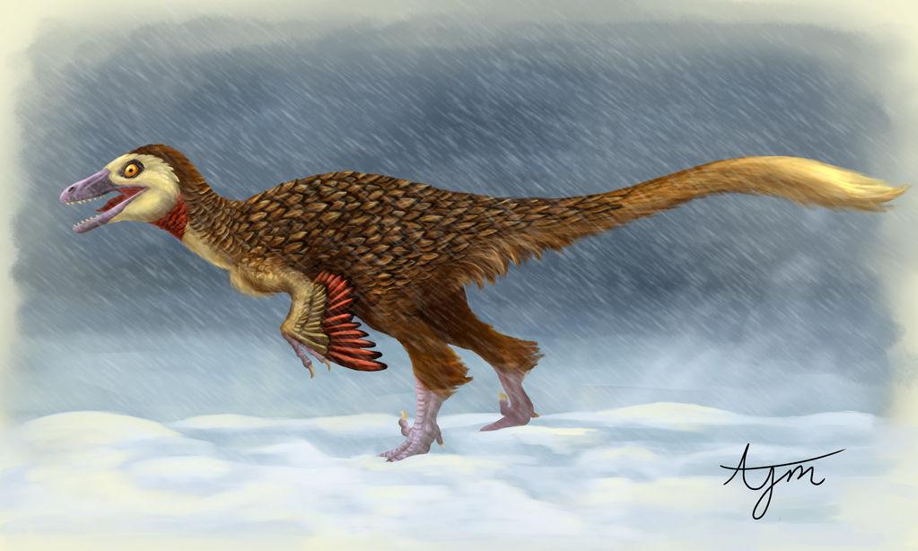 Troodon Paleoart Blizard