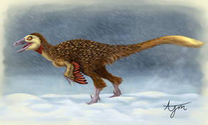 Troodon Paleoart Blizard by kuzim