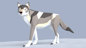 Grey Wolf Low Poly