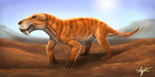 Rubridgea artrox - The southern Gorgon