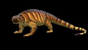 Monsters of the Karoo: Euntosaurus africana