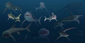 Shark week  Low poly Panoply