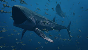 Leedsichthys in Low Poly
