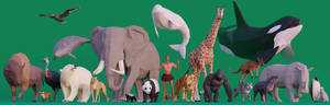 Low Poly Danielle and Friends: World Wildlife Day