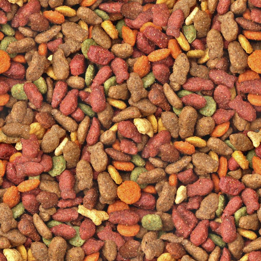 Dog Food Texture