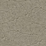Seamless cracked concrete