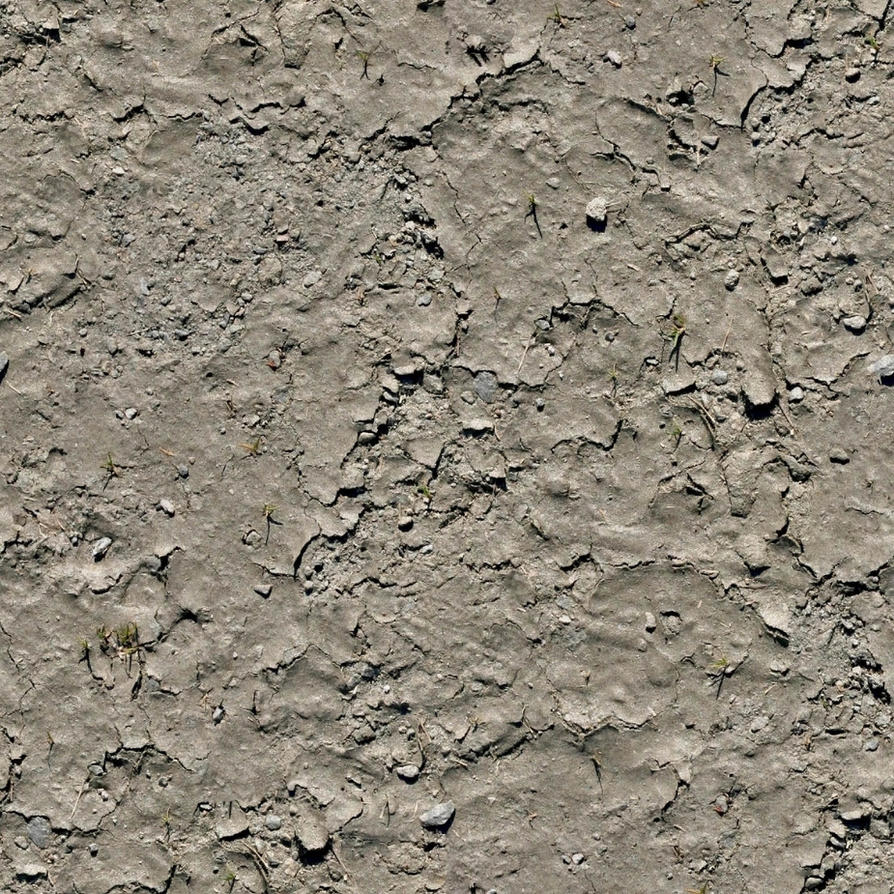 Seamless dry mud texture by hhh316