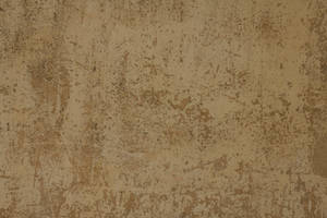 Brown rough stucco plaster wall paper texture  by hhh316