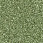 (GRASS 5) Plastic turf lawn green ground field sea
