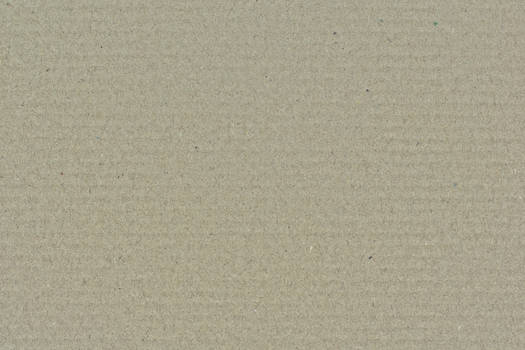 Cardboard Light Brown Texture 3888 X 2592