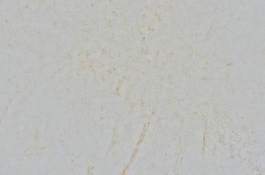 Cardboard White Dirty Grain Texture 4928 X 3264