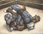 Wrangling Walrus